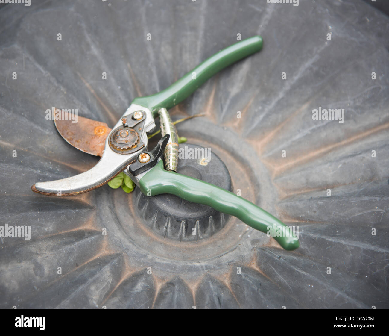 High angle view over gardening shears on garbage can lid. - Stock Image