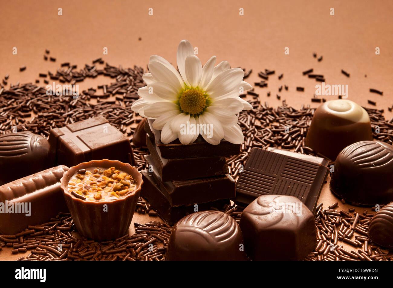chocolate bonbons and pralines Stock Photo