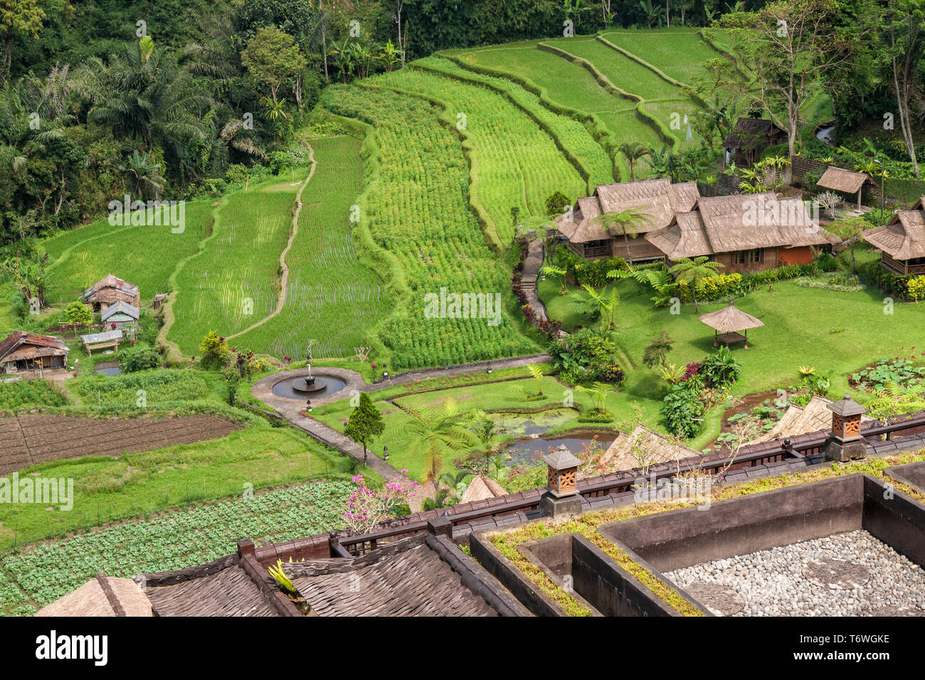 Rural Landscape Farm And Rice Fields In The Jungle Bali Indonesia Stock Photo Alamy