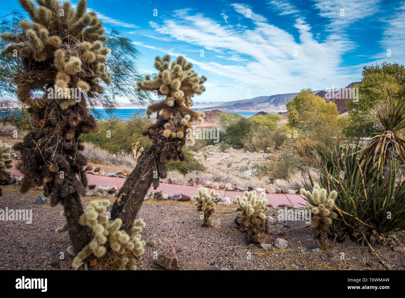 views at lake mead nevada near hoover dam Stock Photo