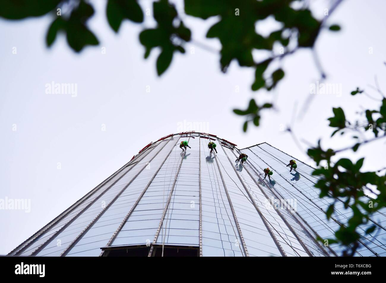Zhengzhou, China's Henan Province. 2nd May, 2019. Workers clean the glass curtain wall of a skyscraper in Zhengzhou, capital of central China's Henan Province, May 2, 2019. Credit: Feng Dapeng/Xinhua/Alamy Live News Stock Photo