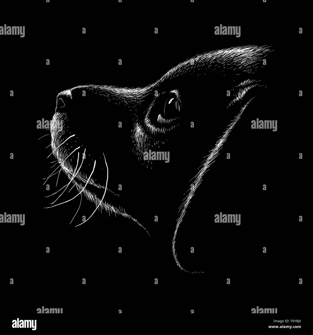316cf7b2e8609 The Vector logo dog or wolf for tattoo or T-shirt design or outwear.