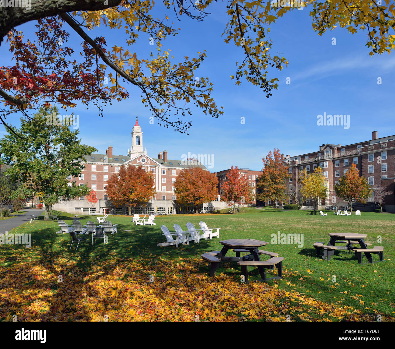 Radcliffe Quadrangle, Harvard University, in the fall. Red dome, white tower, brick buildings, blue sky, green grass, wooden chairs,  autumn leaves… Stock Photo