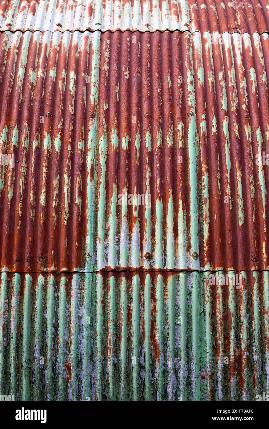 Corrugated steel wall to dilapidated Nissen hut building with flaking green paintwork - Stock Image