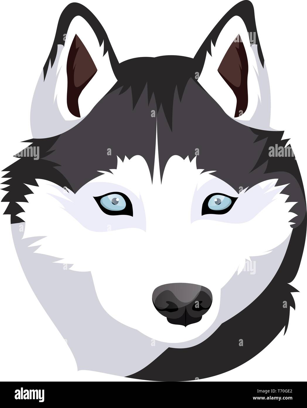 Siberian Husky illustration vector on white background - Stock Vector