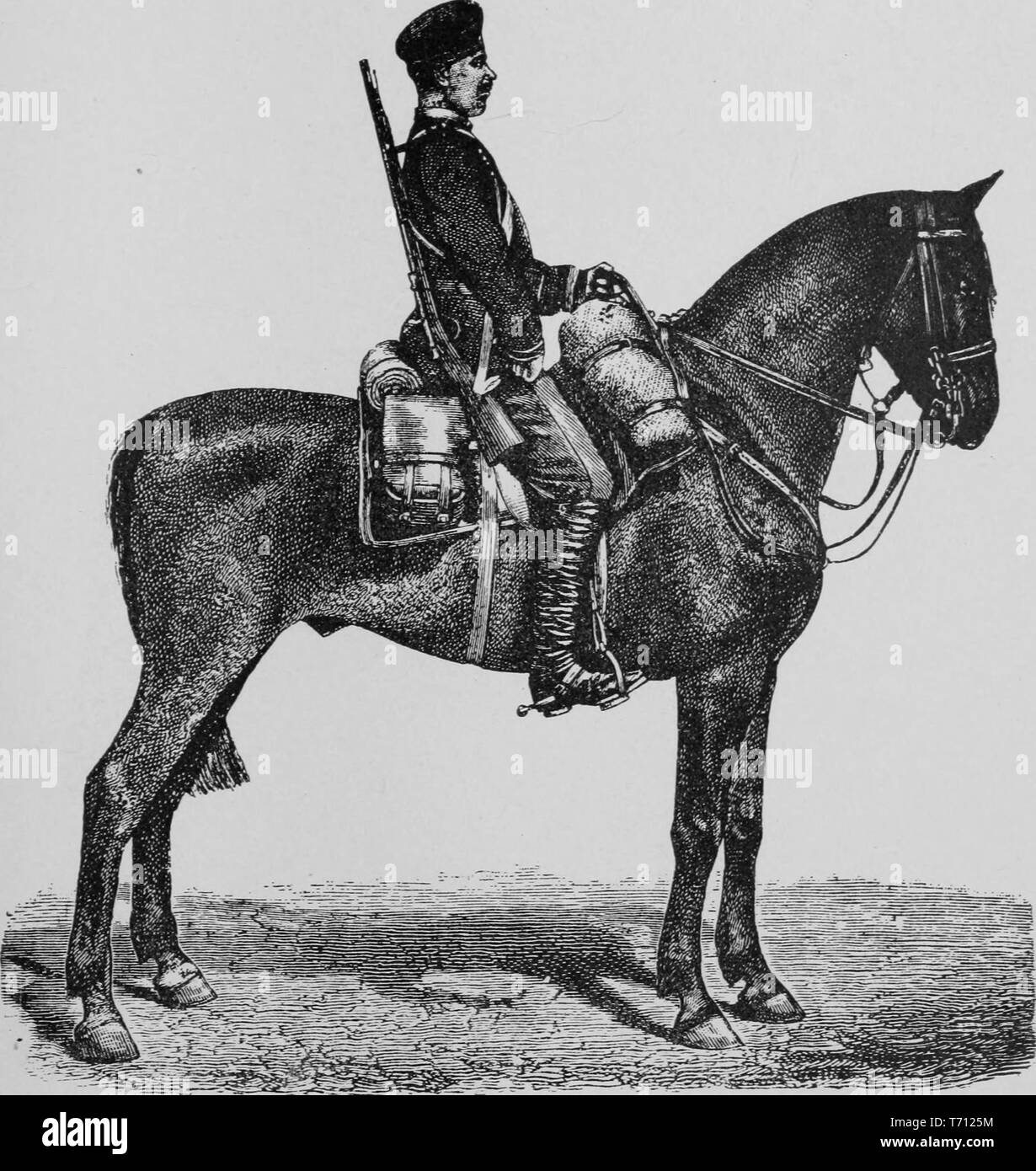 Engraving of a soldier on a horse, 'Russian Dragon', from the book 'Horses, saddles, and bridles', 1906. Courtesy Internet Archive. () - Stock Image