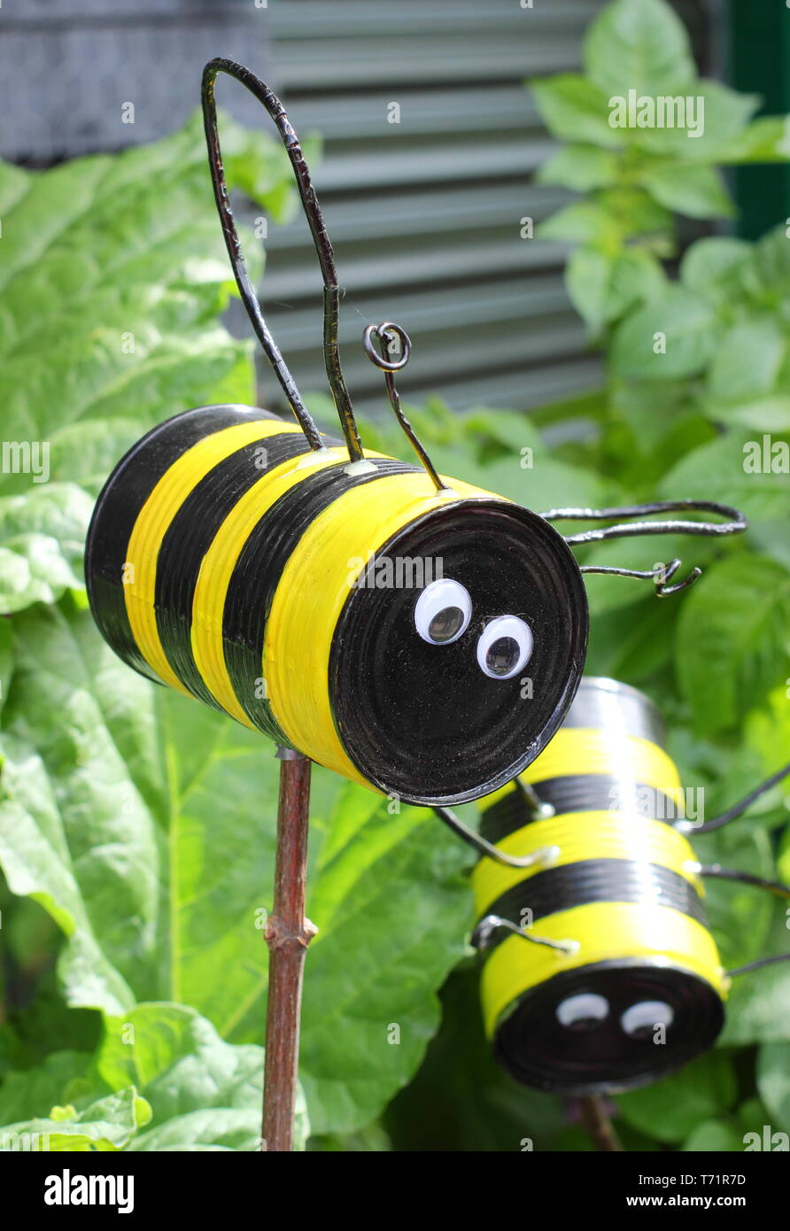 Upcycling for gardens.  Recycled tin cans creatively transformed into bees hovering on stakes in a UK garden - Stock Image