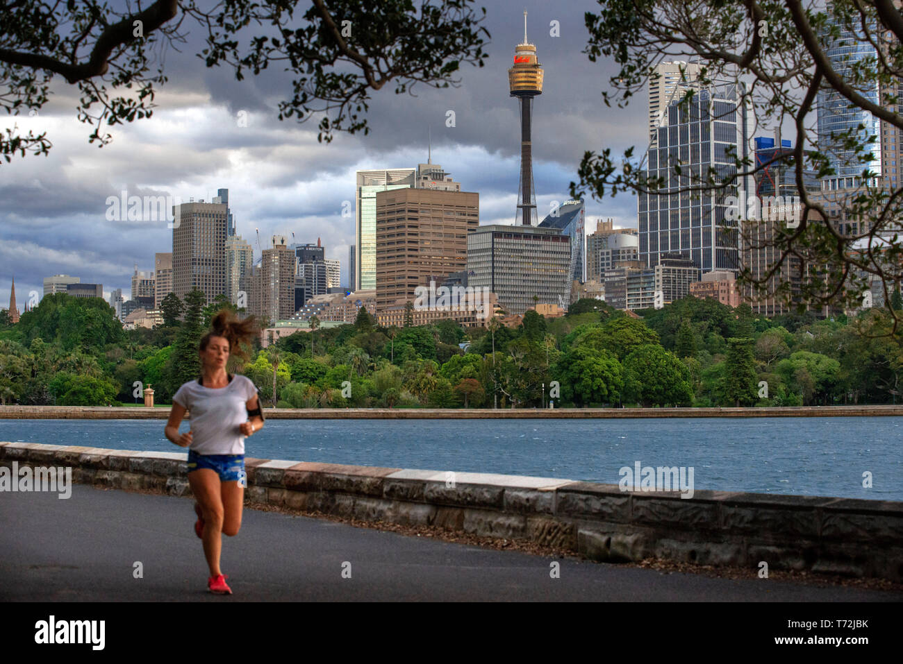 Sydney Tower Eye and woman running in the Circular Quay promenade and botanic gardens Sydney, New South Wales, Australia - Stock Image