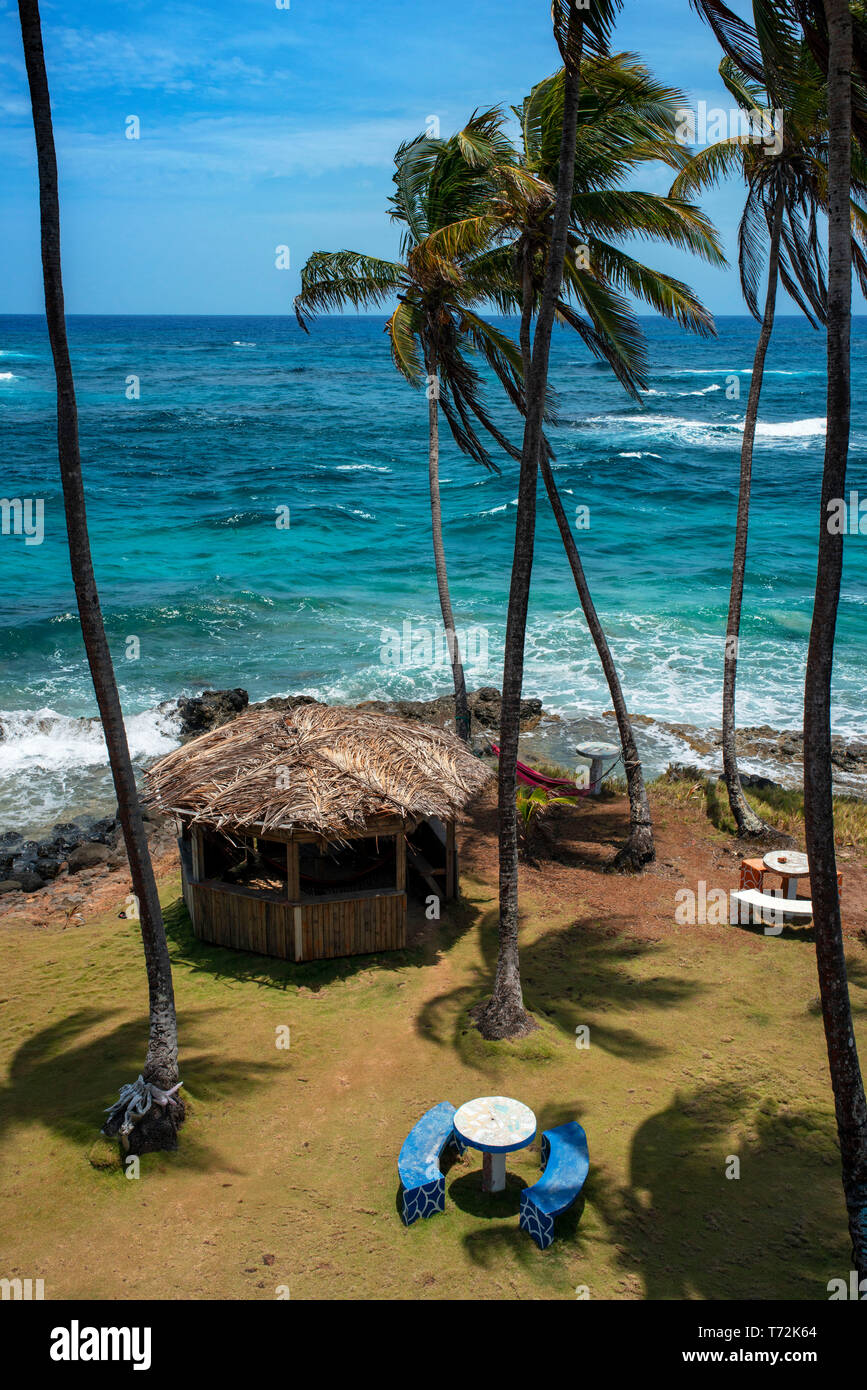 Palms and wild beaches in Big Corn Island, Caribbean Sea, Nicaragua, Central America, America. Stock Photo