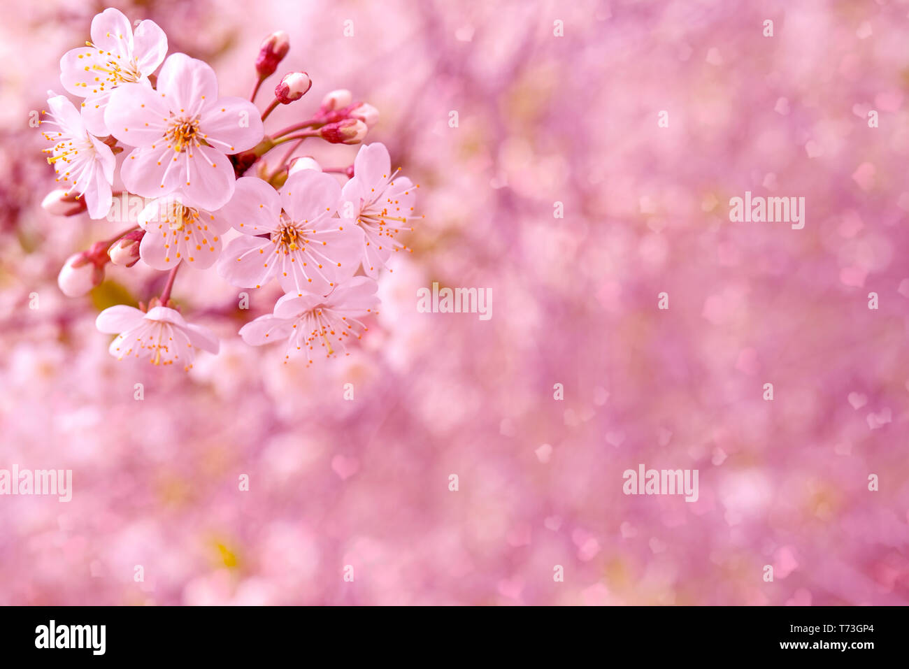 Engagement Invitation Card High Resolution Stock Photography and Images -  Alamy