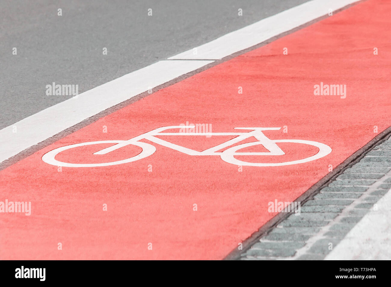Bicycle path with a bicycle symbol on the asphalt road. Pink coral color Stock Photo