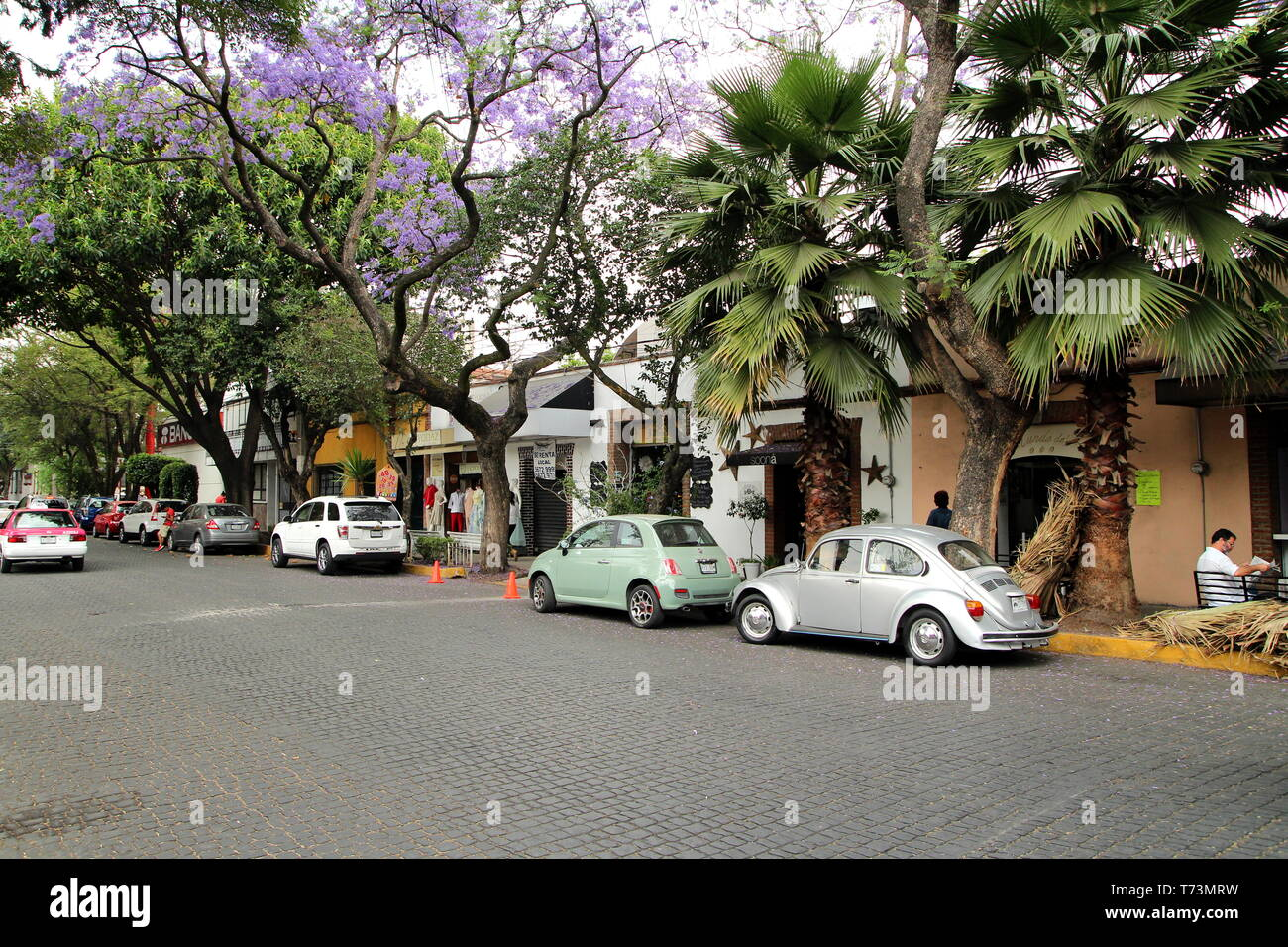 Coyoacan borough, Mexico city. - Stock Image