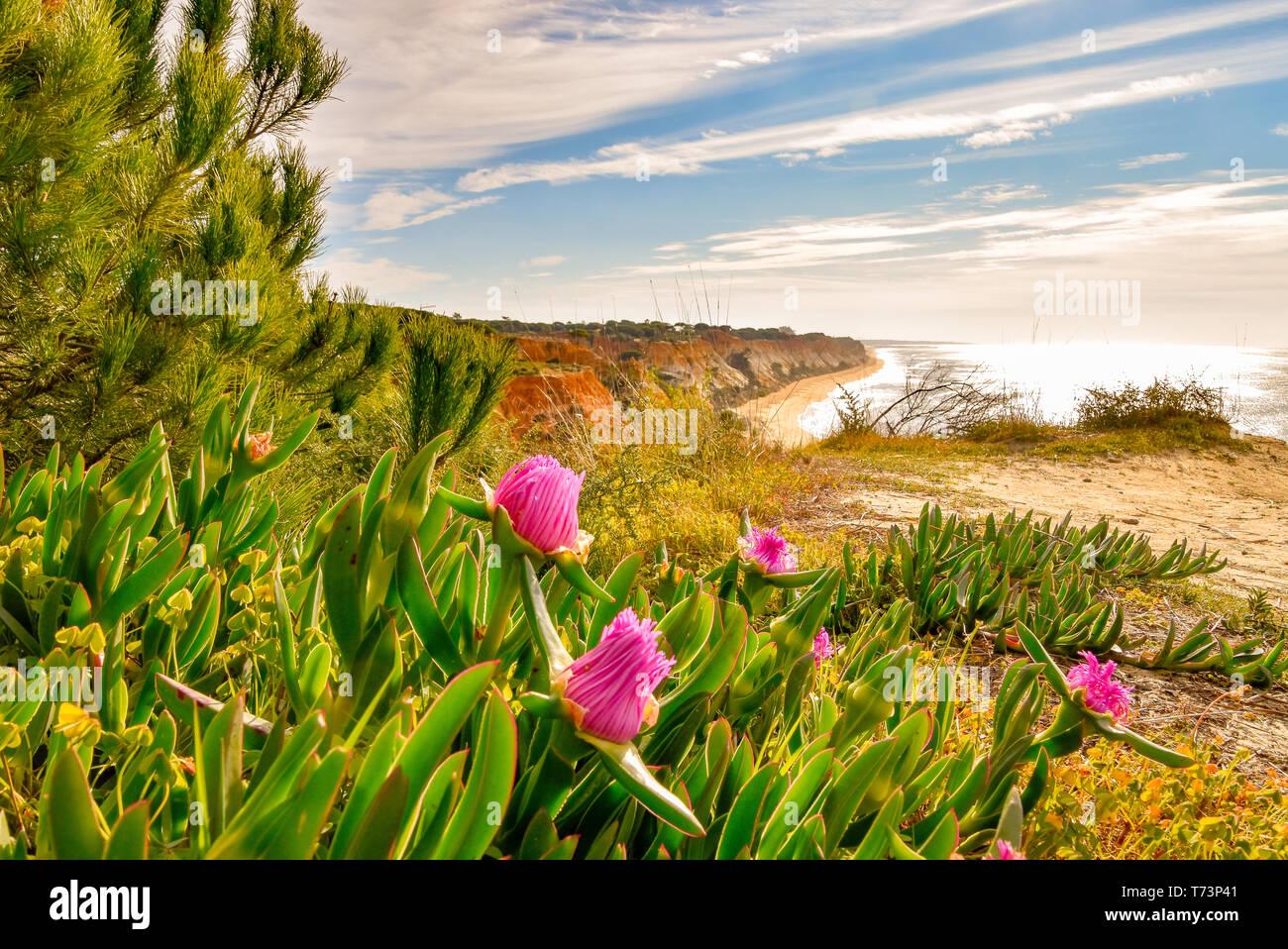 Die Algarve in Portugal eine der schönsten Landschaften der Welt - Stock Image