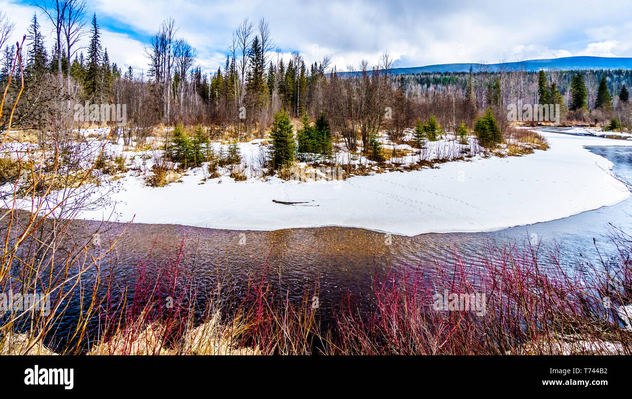 Snow and ice lining the creeks and wetlands in winter time Wells Gray Provincial Park in the Cariboo Mountains of British Columbia, Canada - Stock Image