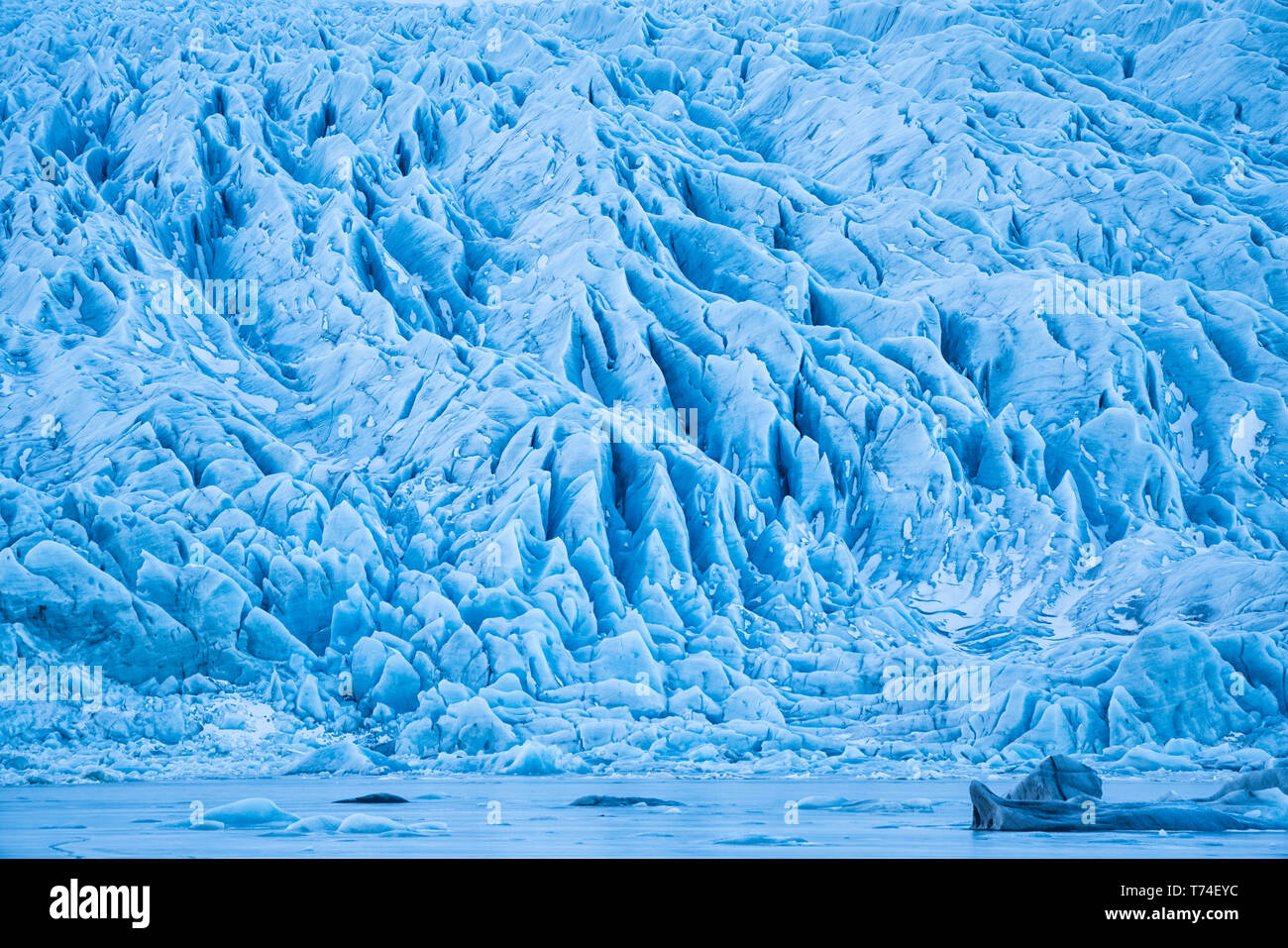 Glacier along the Southern shore of Iceland., icebergs are frozen into the lagoon at the base of it; Iceland Stock Photo