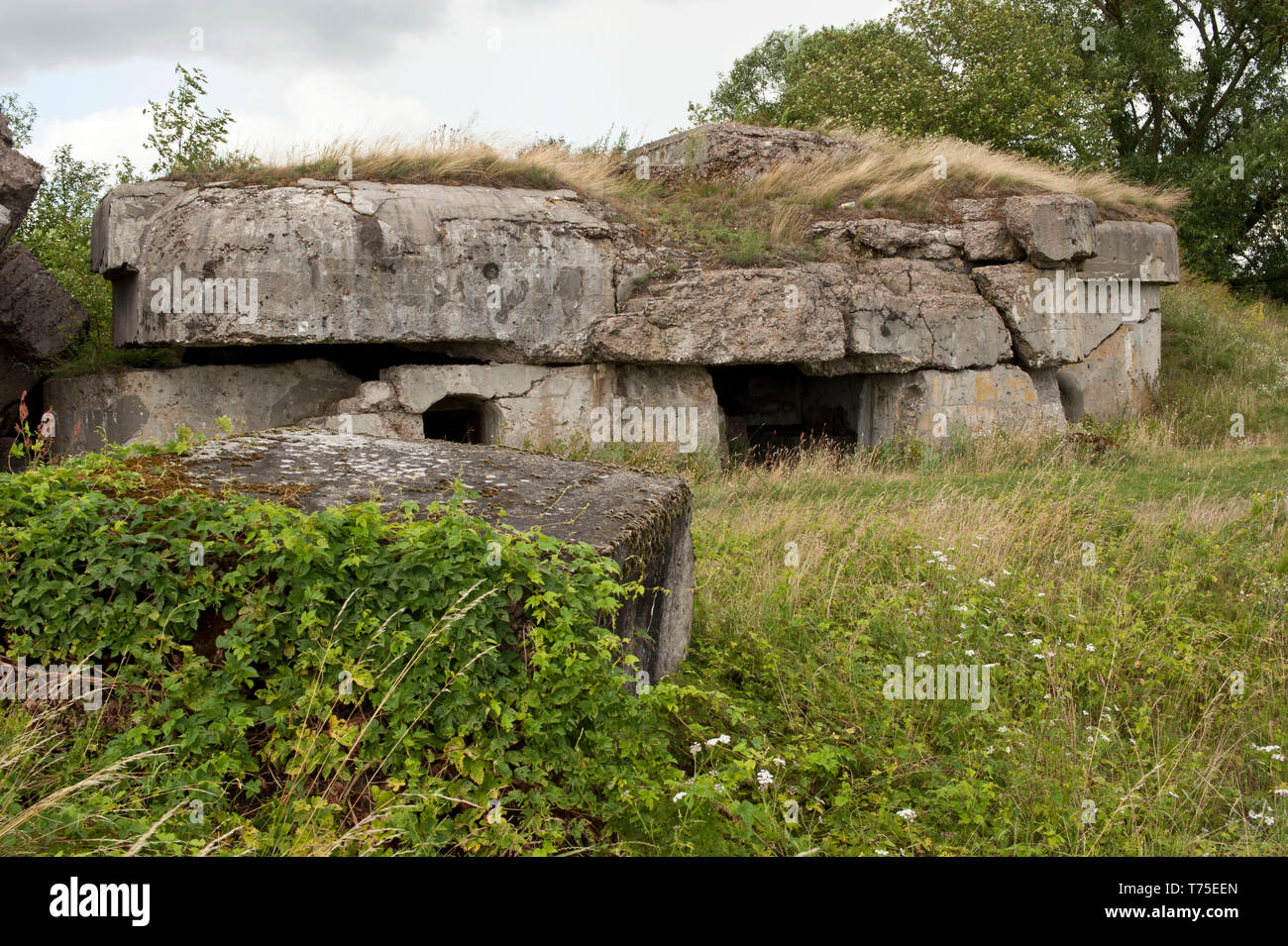 Osowiec fortress (Biebrza Nati...