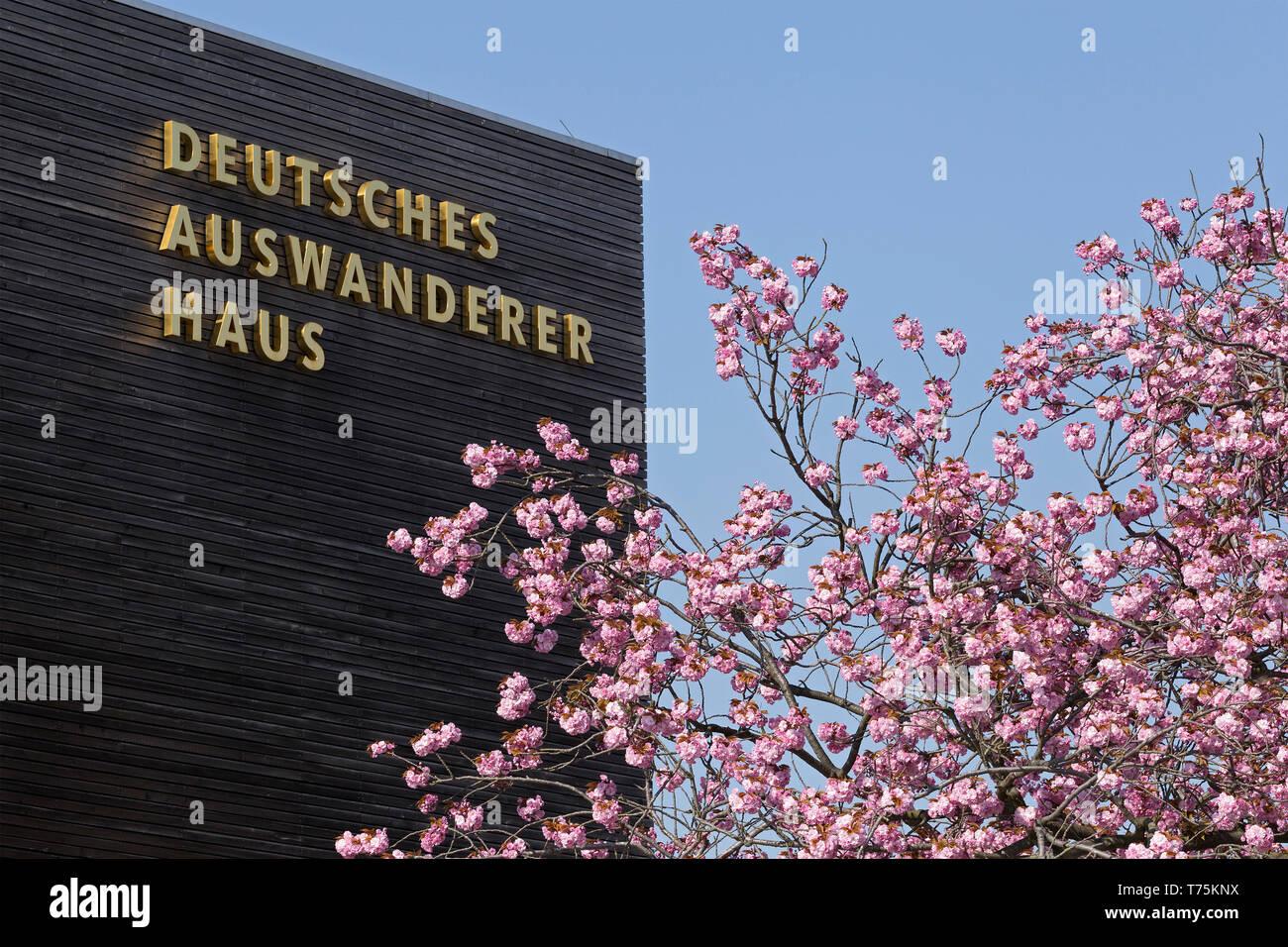 Deutsches Auswanderer Haus (German Emigration Center), Havenwelten, Bremerhaven, Bremen, Germany - Stock Image