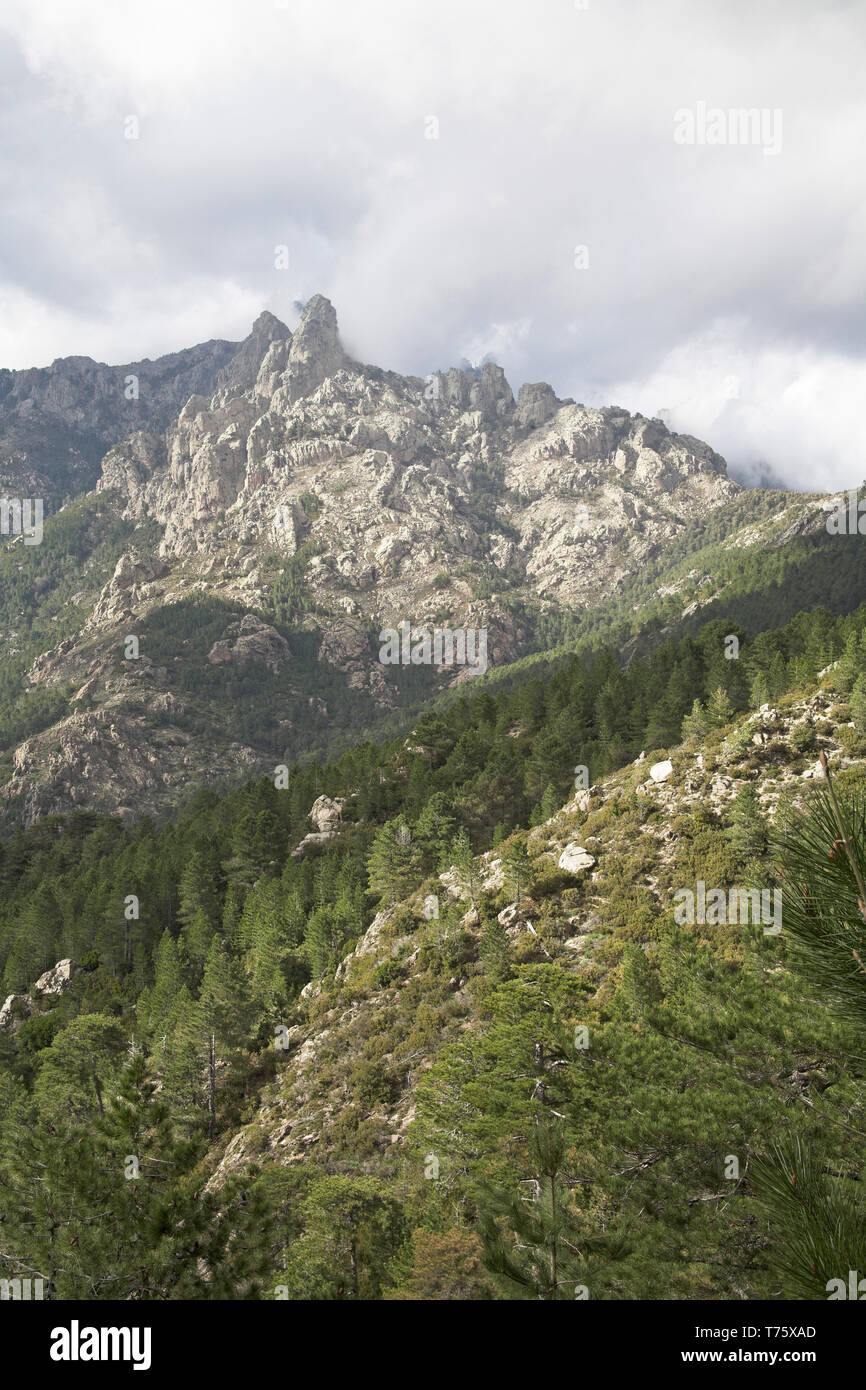 Mountains in the Monte Incudine massif from the Col de Bavella Corsica France Stock Photo
