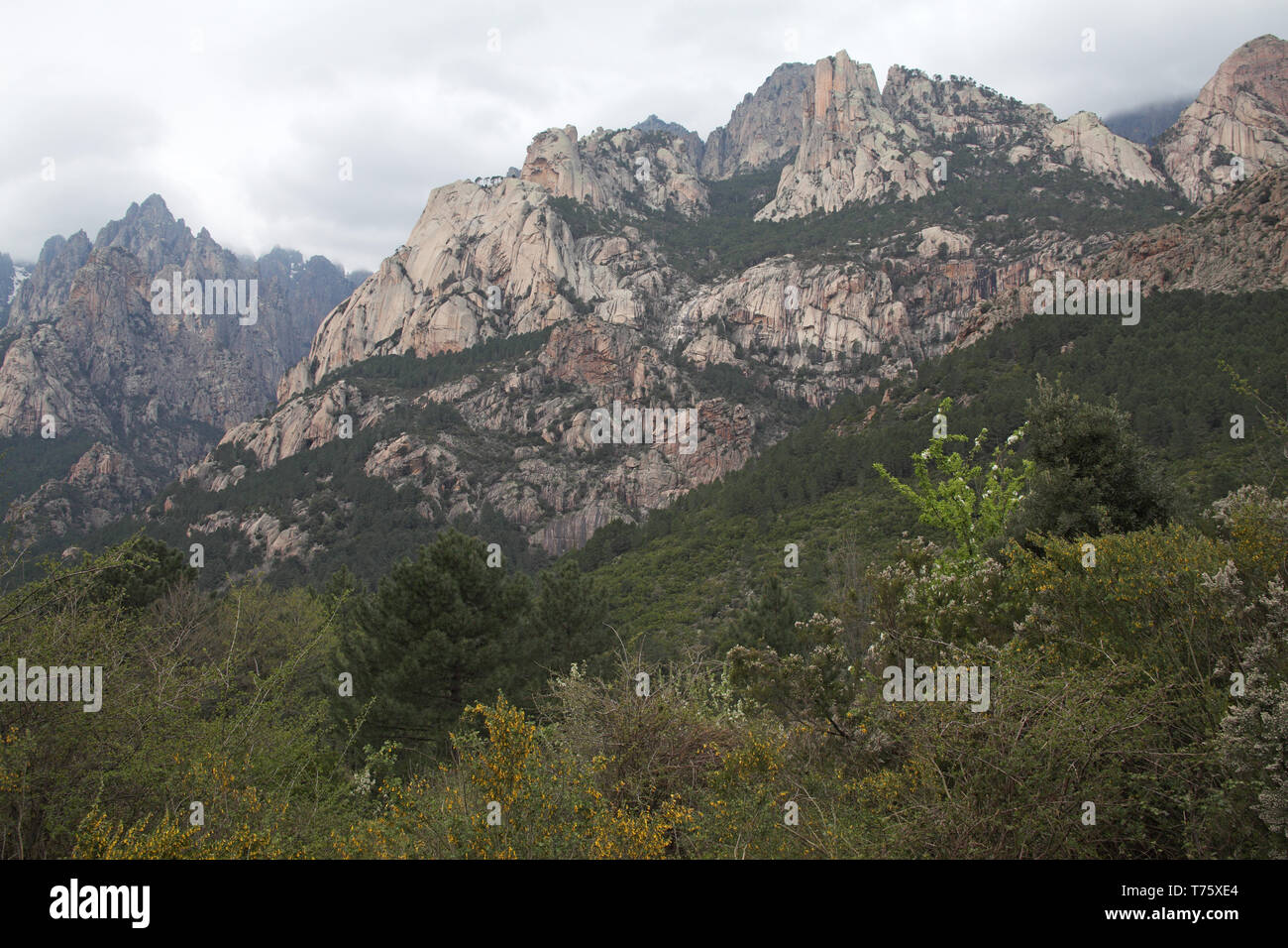Mountains in the Monte Incudine range Parc Naturel Regional de Corse Corsica France Stock Photo