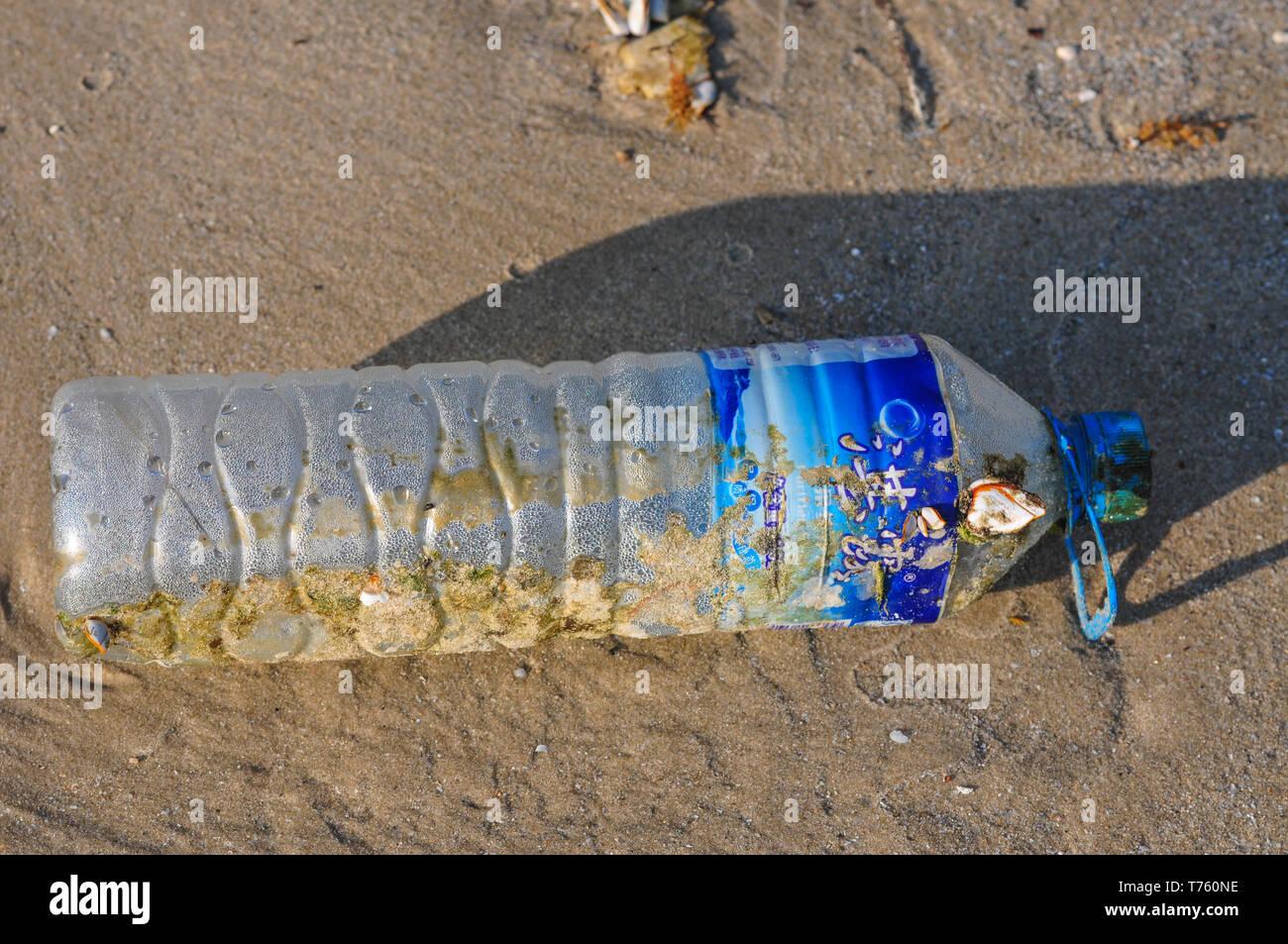 Beach pollution - Stock Image