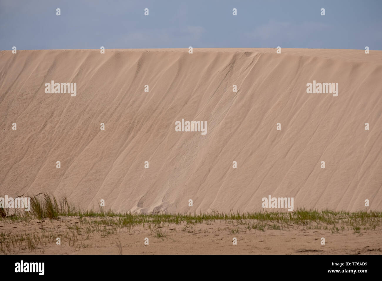 The Alexandria coastal dune fields at the Sundays River mouth. The sand dunes are near Addo / Colchester on the Sunshine Coast in South Africa. - Stock Image