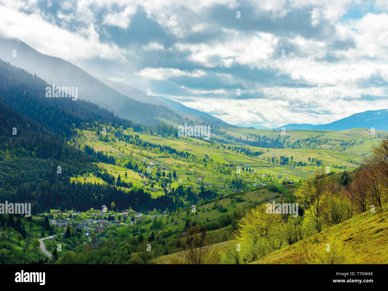 road through the village in valley of Carpathians. lovely springtime scenery in mountains of Synevyr National park - Stock Image