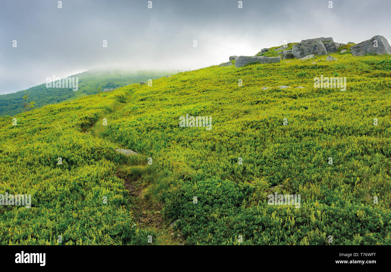 path through grassy meadow to huge boulders. dramatic landscape in mountains on a summer stormy morning - Stock Image