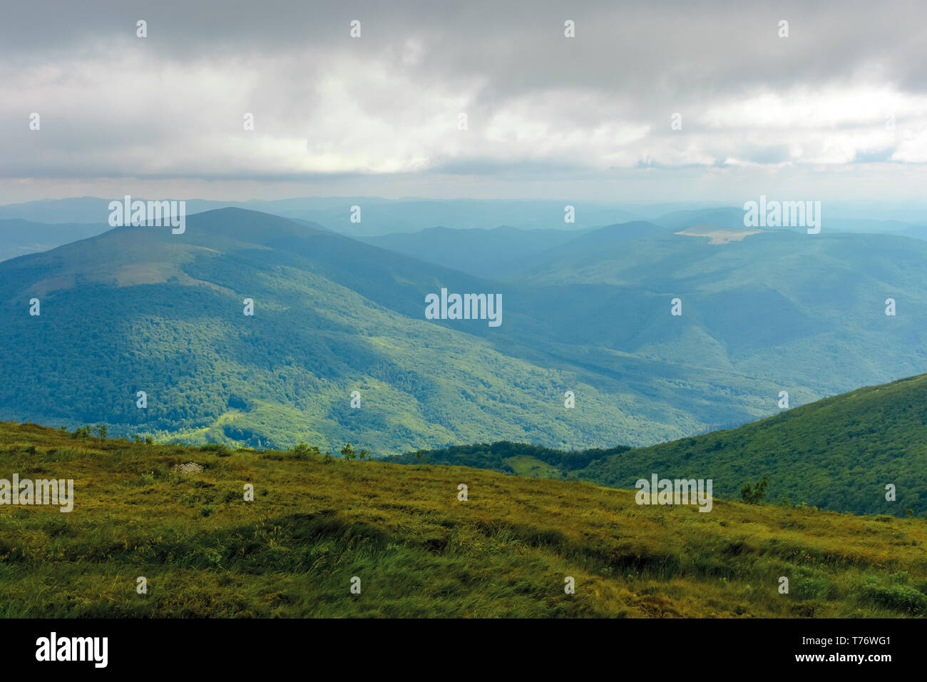 sun lit valley in afternoon. beautiful mountainous landscape and cloudy sky in golden light. lovely scenery after the storm. view from the top of a hi - Stock Image