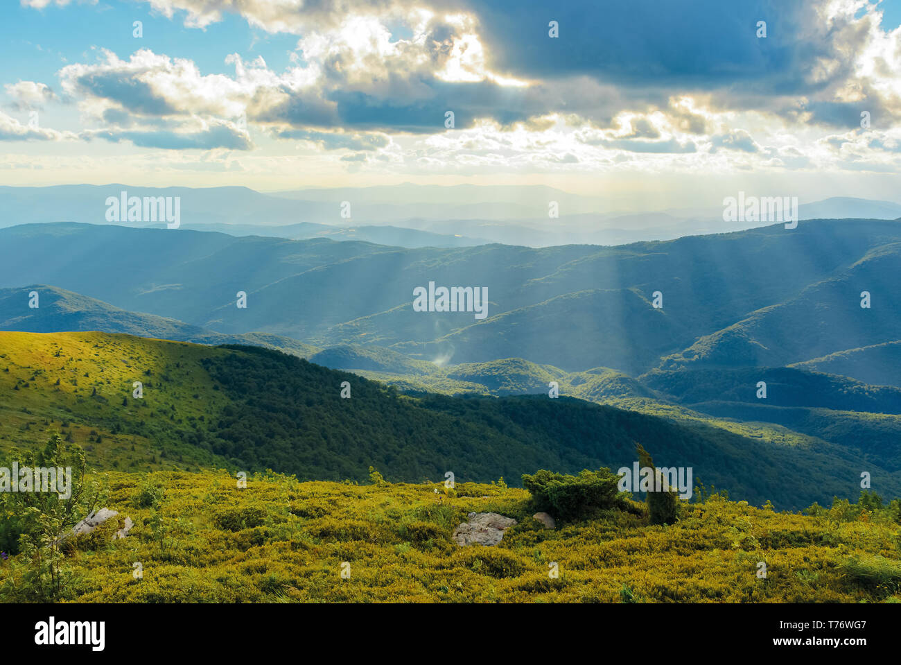 grassy meadow of a hillside on top of mountain ridge. beautiful summer landscape with blue sky and a cloud at sunset - Stock Image