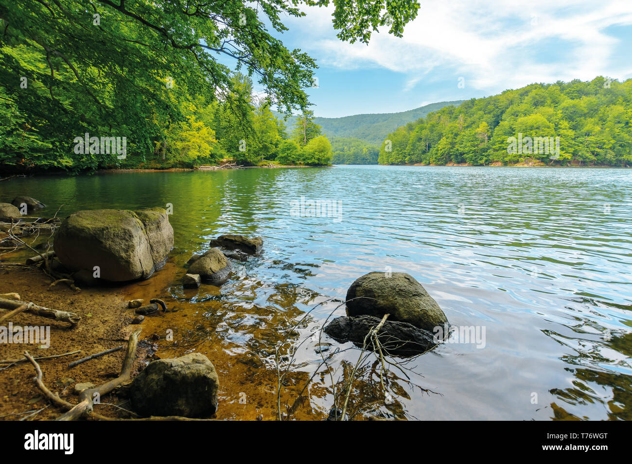 beautiful summer scenery near the mountain lake. beech forest and rocks on the shore. sunny weather and crystal clear water - Stock Image