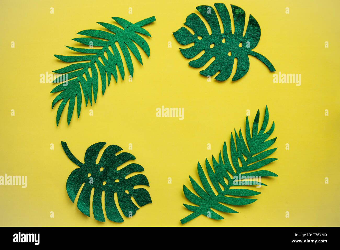 Felt tropical leaves Fern and Monstera on a yellow background in minimal style. Summer design. - Stock Image