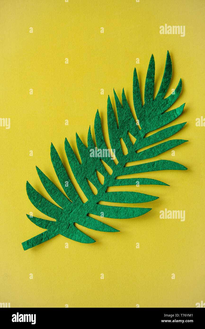 Felt tropical leaf Fern on a yellow background in minimal style. Summer design. - Stock Image