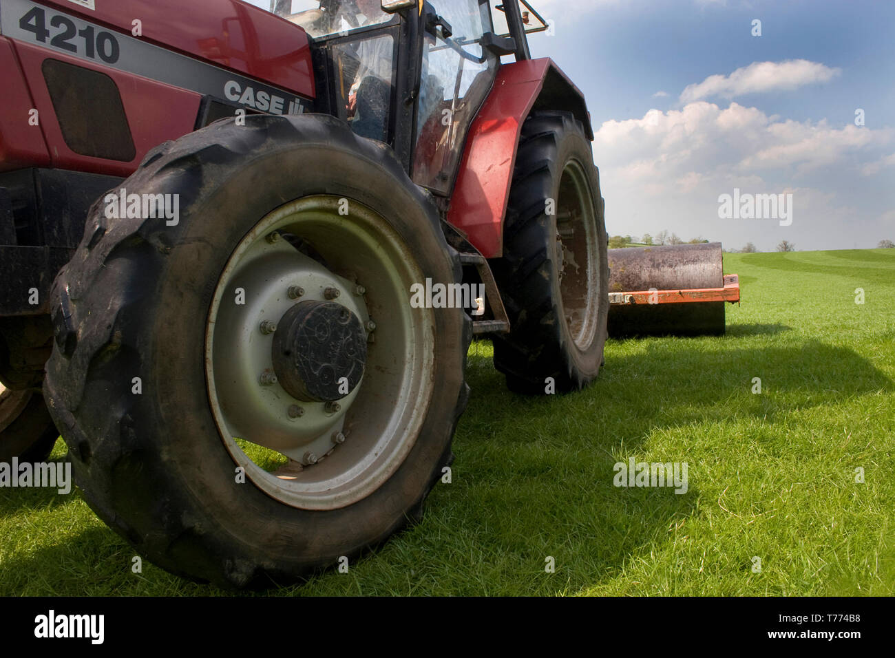 low angle of tractor grass roller preparing pasture, northern England - Stock Image