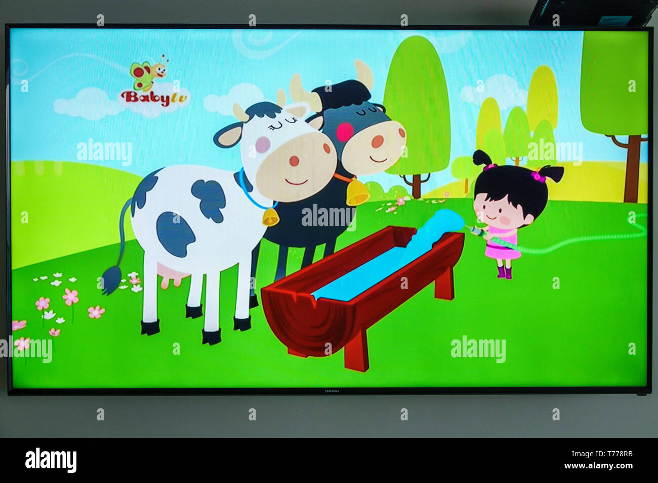 Cartagena Colombia TV television monitor screen flat screen cartoon BabyTV audience age targeting entertainment Stock Photo