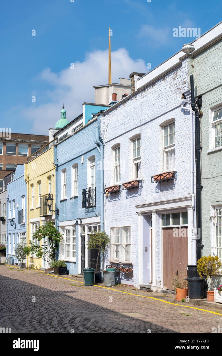 Colourful Houses and small trees and shrubs in containers in Princes Gate Mews, Kensington, London, England Stock Photo