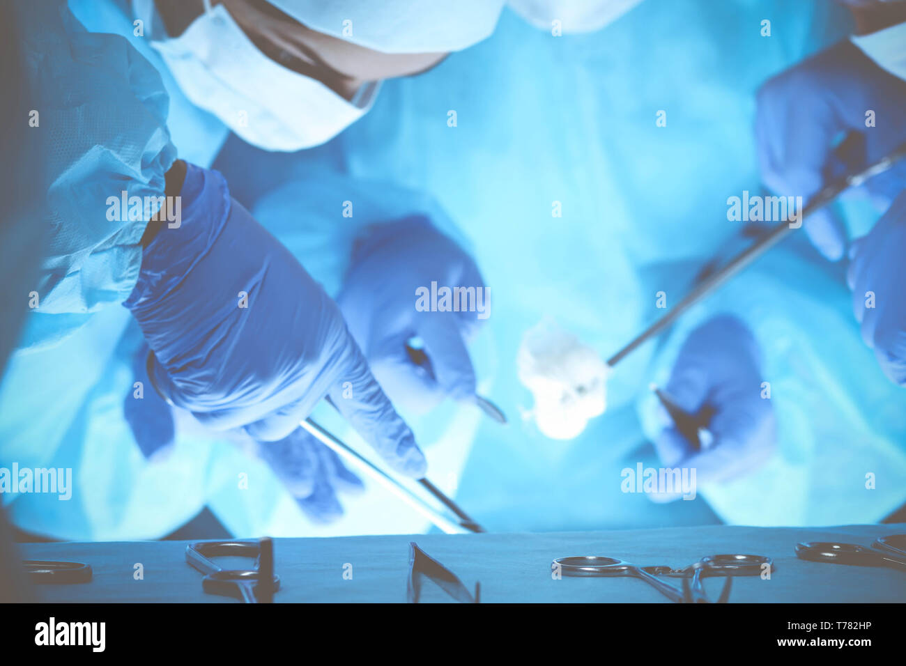Group of surgeons at work while operating at hospital. Health care and veterinary concept. - Stock Image