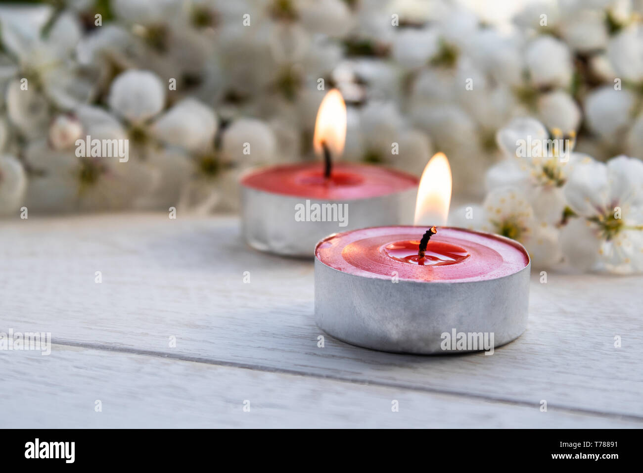Closeup of red candles near the branches of white cherry blossoms. Burning candle Stock Photo