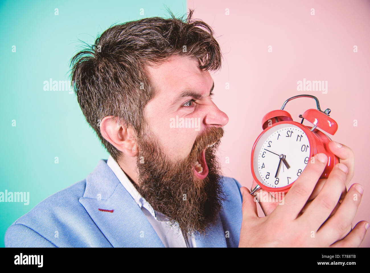 Time management skills. How much time till deadline. Time to work. Man bearded aggressive businessman hold clock. Stress concept. Hipster stressful working schedule. Businessman has lack of time. - Stock Image