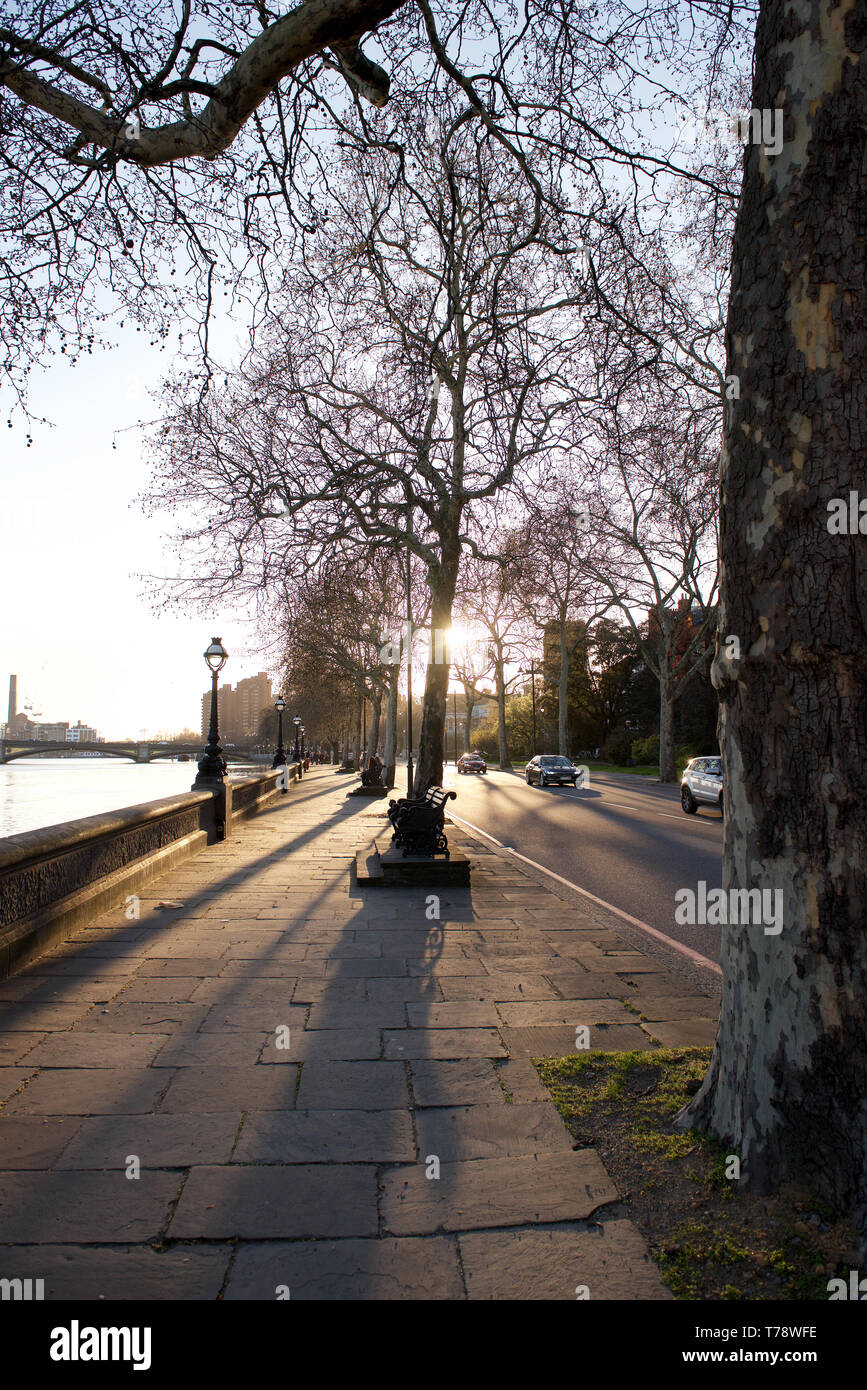 Chelsea Embankment By The River Thames In London England Stock Photo Alamy