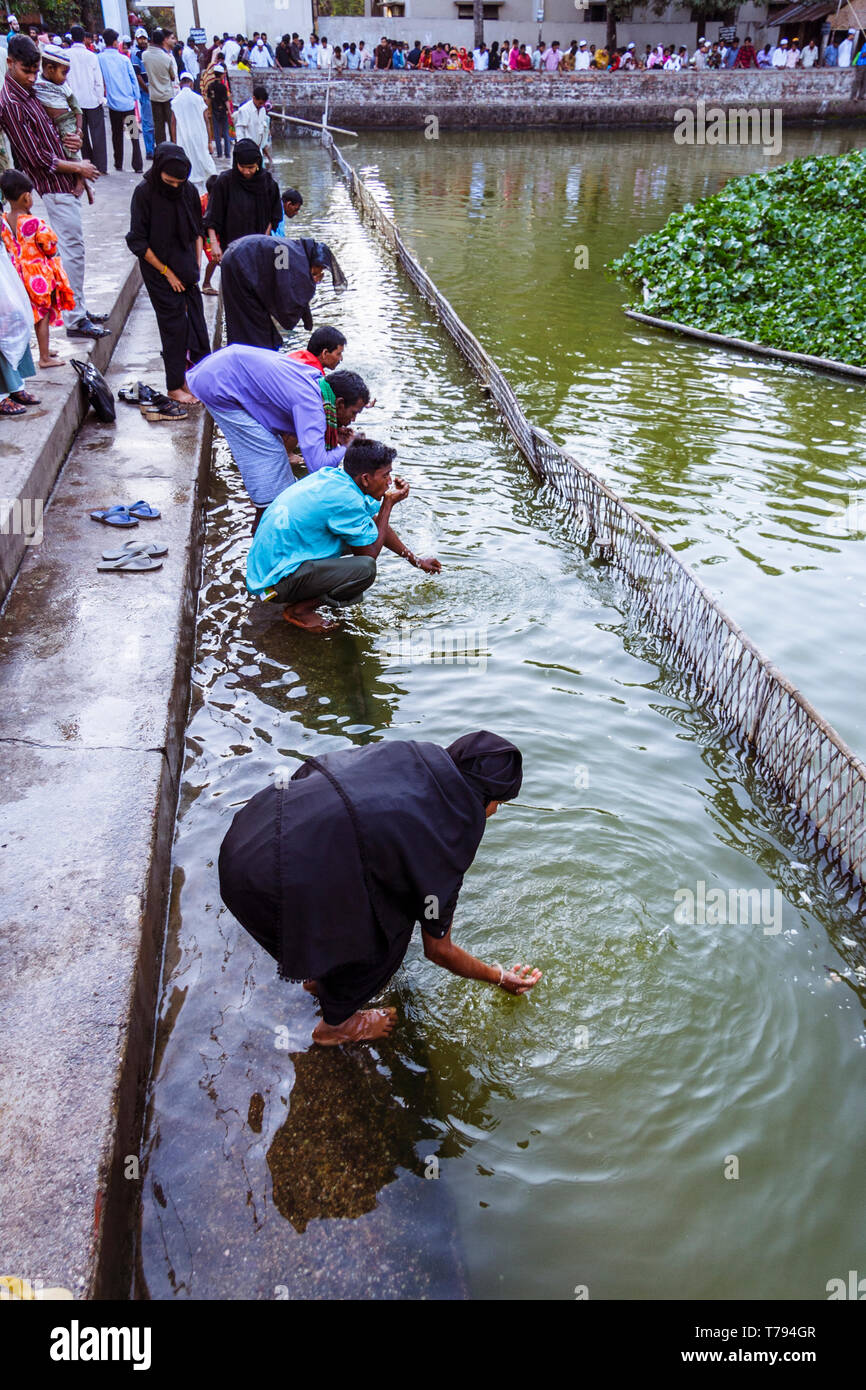 Sylhet, Bangladesh : Pilgrims make their ablutions at the pond filled with sacred catfish at the northern end of the shrine of Hazrat Shah Jalal (a re - Stock Image