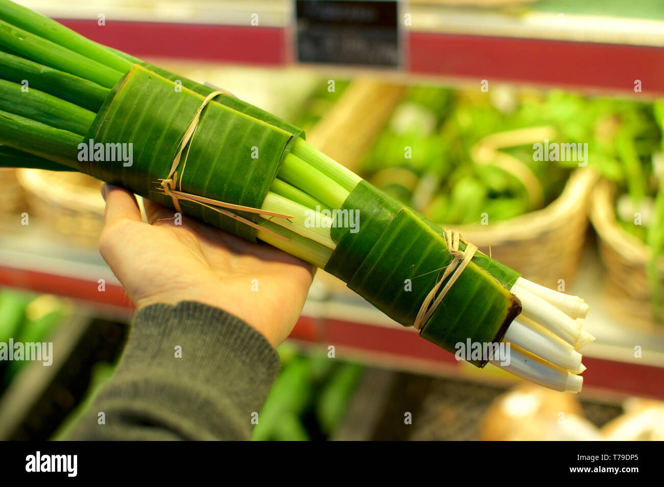 Leeks wrapped in Banana leaf and held in female hands. This is an excellent solution how replace plastic packaging and reduce the waist of it - Bali,  - Stock Image