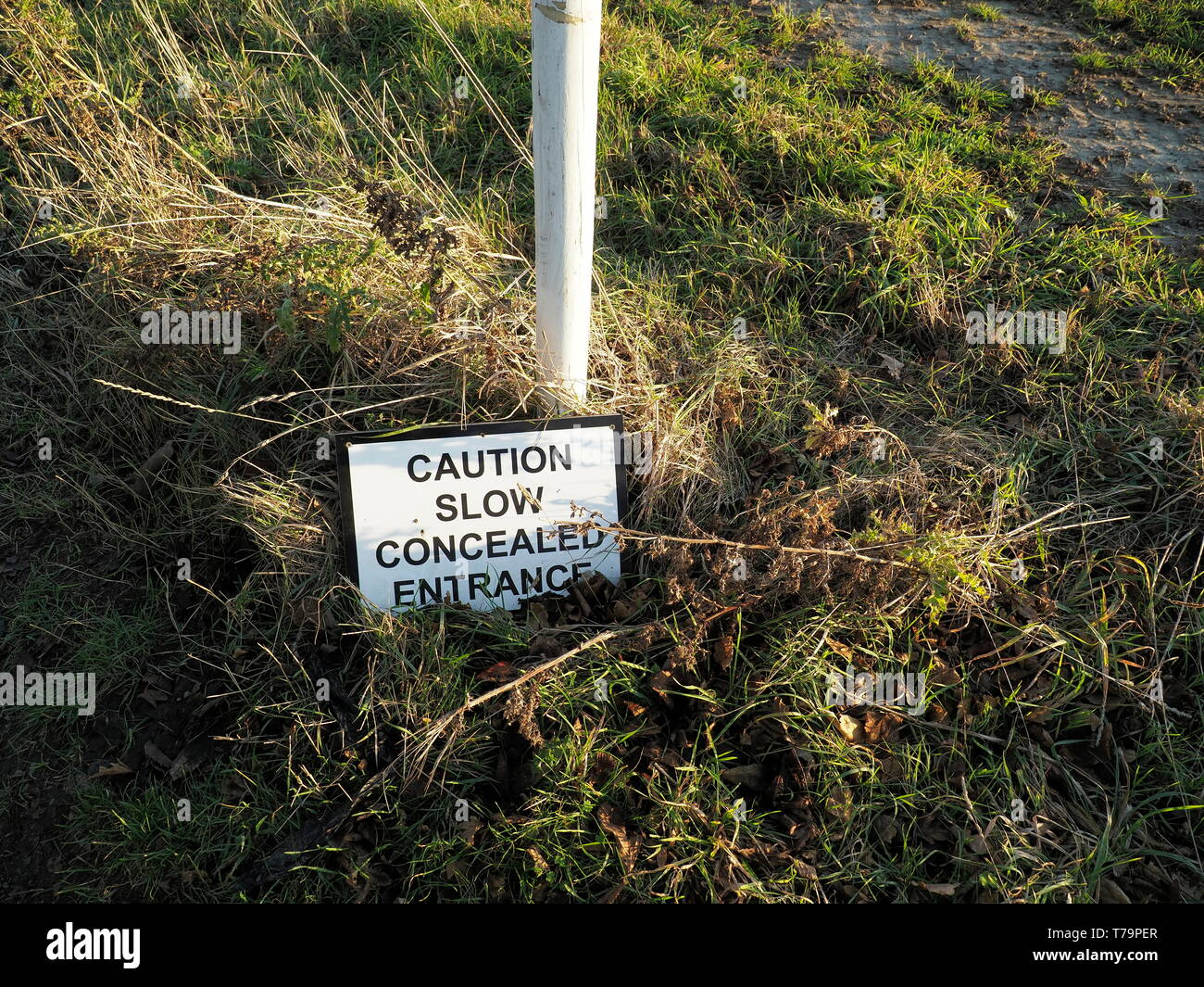 Sign stating 'Caution Slow Concealed Entrance' fallen on the verge by a field. - Stock Image