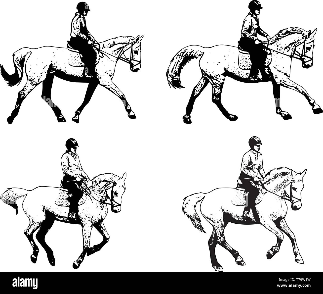 riding horses sketch illustration set - vector - Stock Image