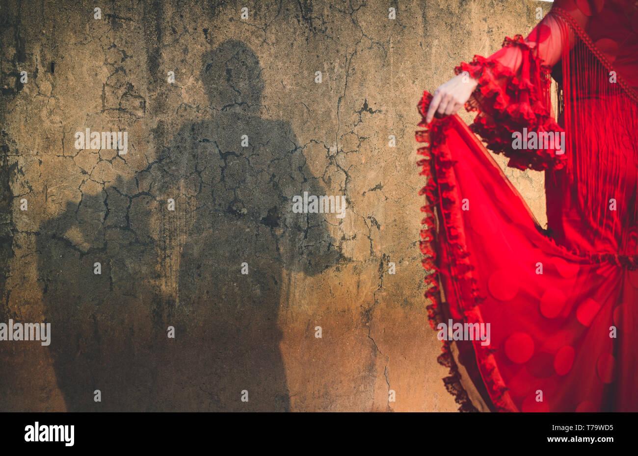 Shadow of woman dressed in flamenco dress on cracked wall, focus on wall shadow and out of focus dress - Stock Image