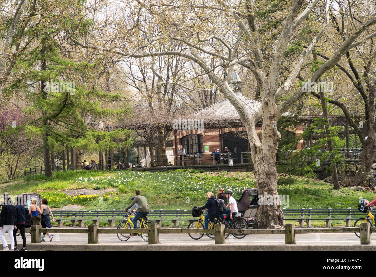 Central Park in the Springtime is very popular, NYC, USA Stock Photo
