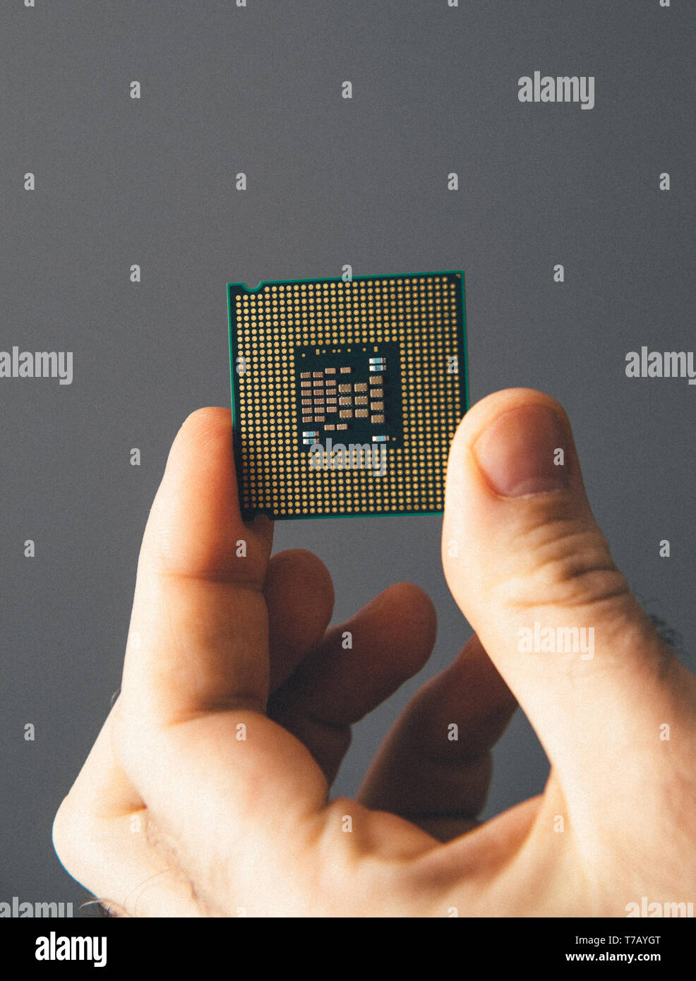Male IT professional holding in hand new powerful CPU Central processing unit with high core count and elevated frequency - isolated on gray office background - Stock Image