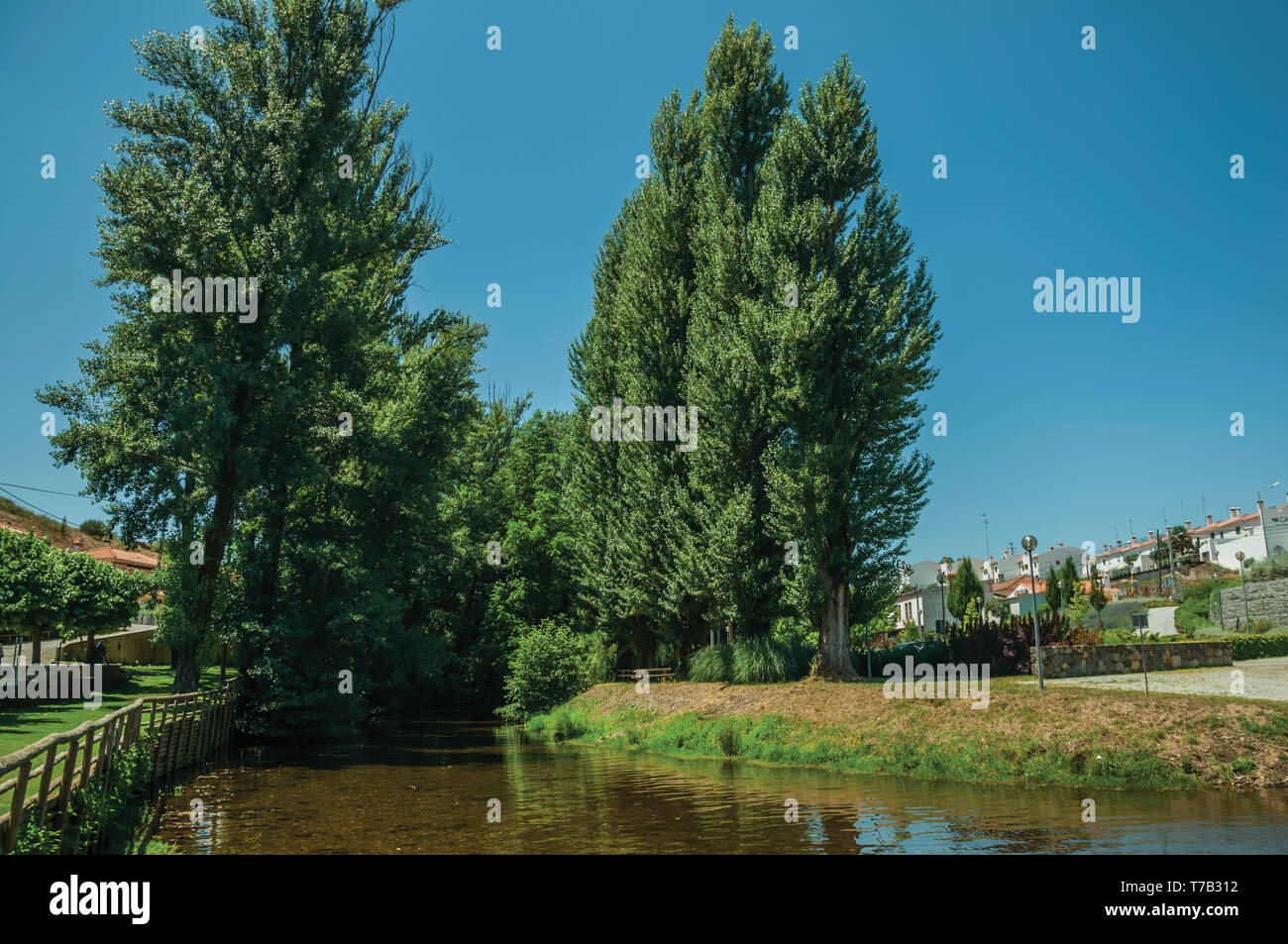 View of Sever River among leafy trees and undergrowth in a sunny day at Portagem. A district of Marvão at the bottom valley in Portugal. - Stock Image
