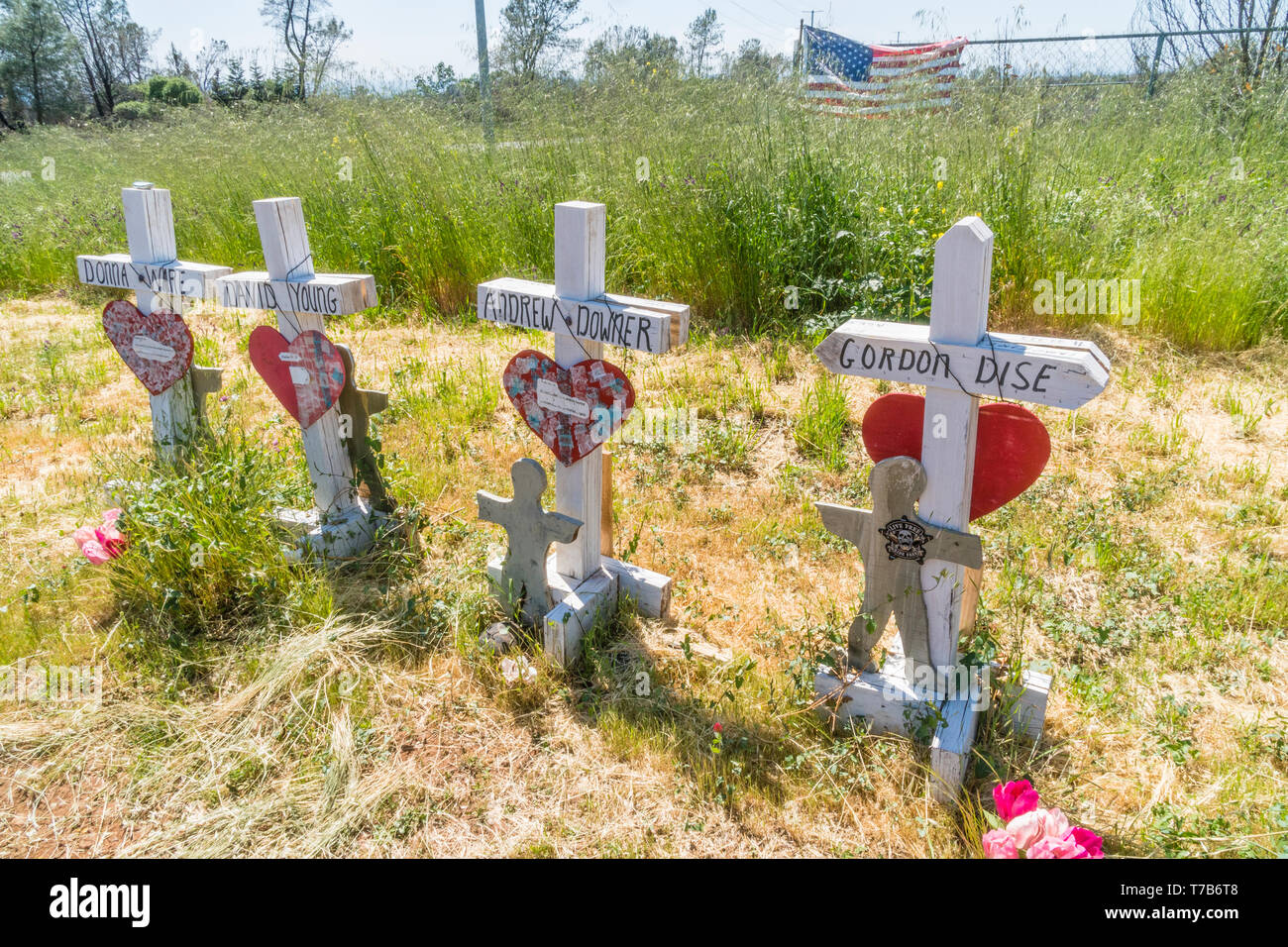 86 crosses were planted to memorialize the victims of the Camp Fire disaster in Paradise, California. The crosses were the idea of Greg Zanis, from Ch Stock Photo