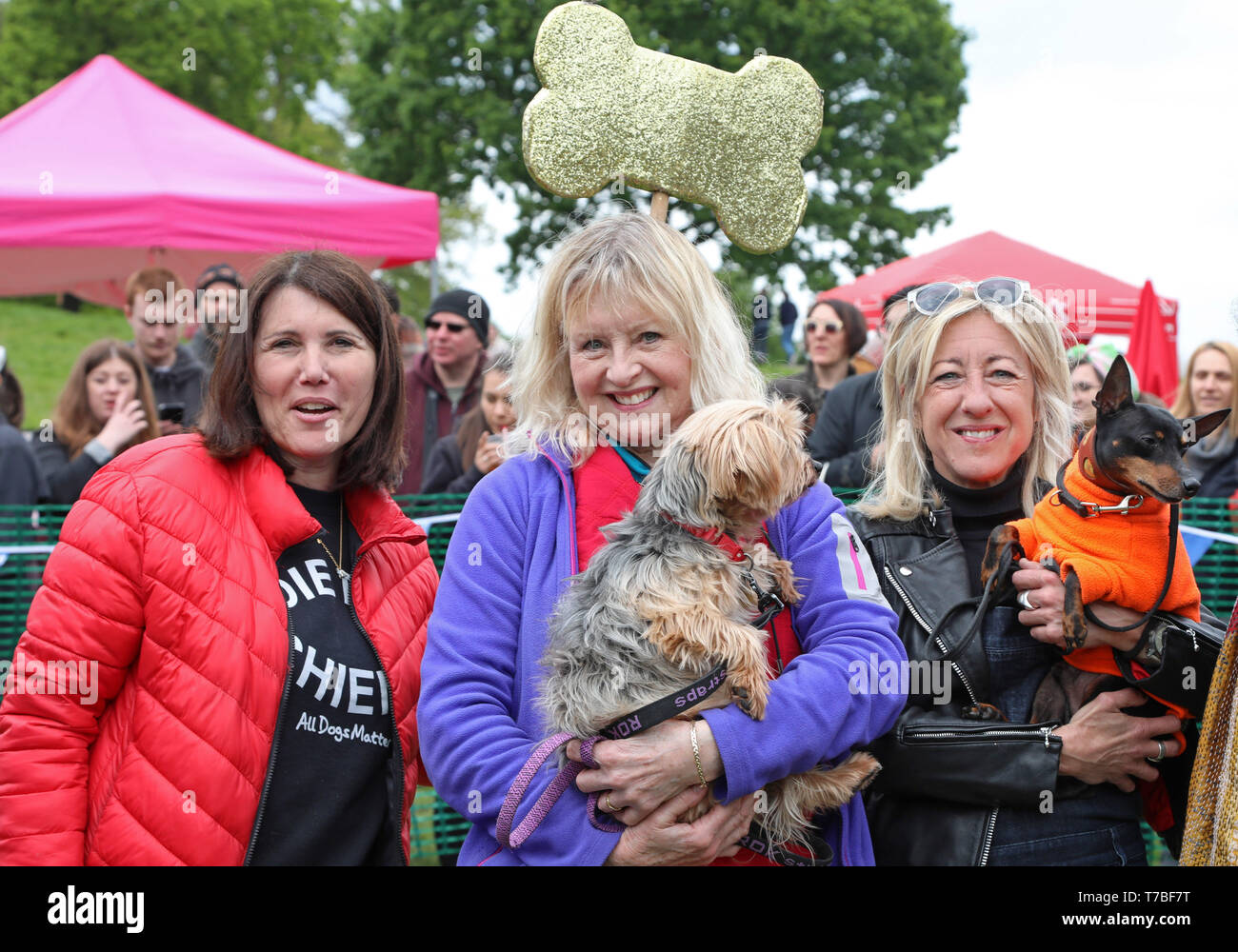 London, UK. 5th May 2019. Judge Liza Goddard with her Yorkshire Terrier, Violet, with radio presenter Anna Webb and her dog Mr Binks and Ira Moss of ADM at the All Dogs Matter Bark Off charity dog show, Hampstead Heath, London, England. Cute dogs took part in several categories of this annual dog show which is run by the charity which houses and rehomes dogs in London and finds homes for dogs from overseas. Dogs competed to be cutest pup, best rescue and more. More information at www.alldogsmatter.co.uk Credit: Paul Brown/Alamy Live News Stock Photo
