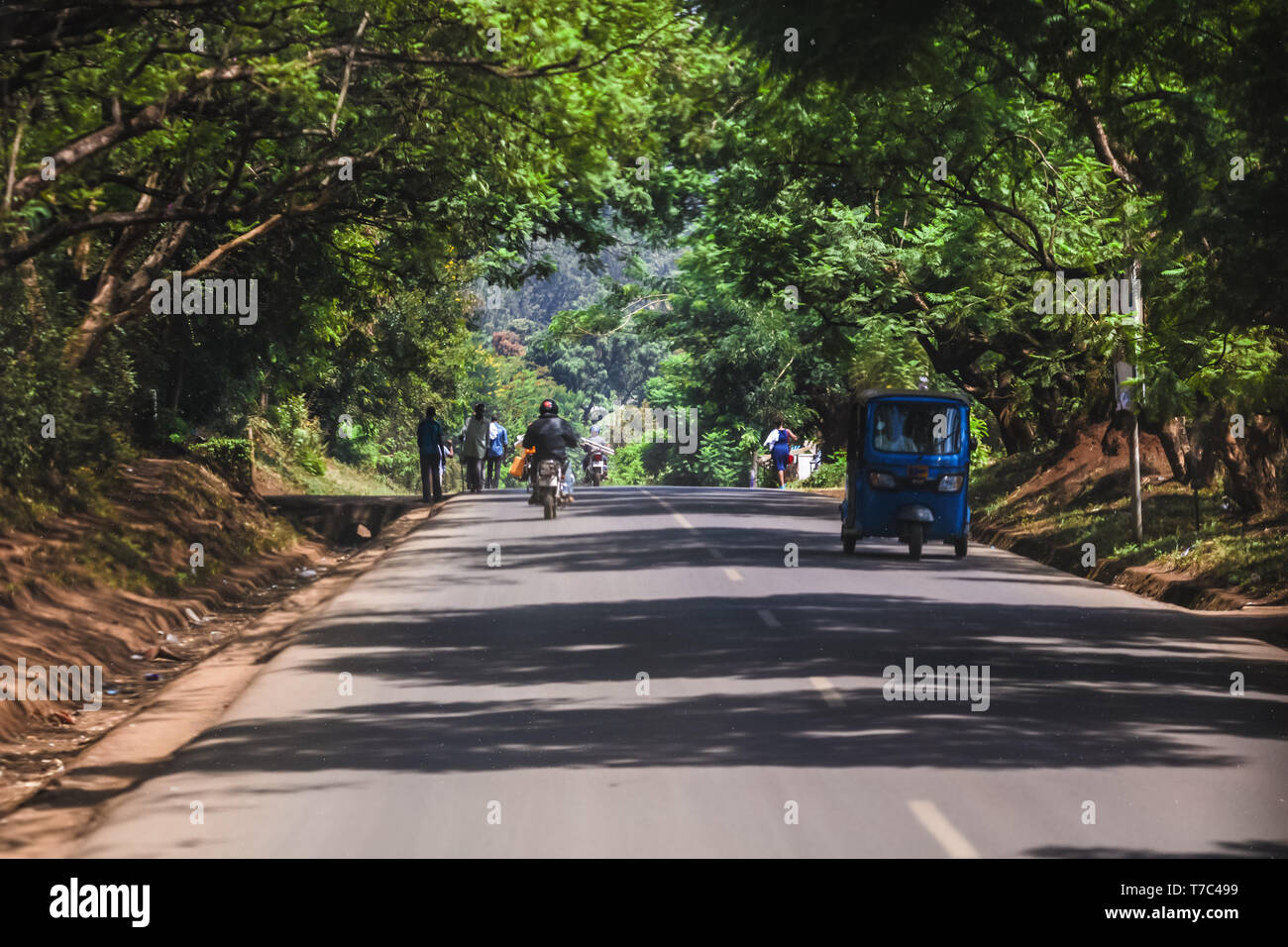Long road through the jungle dense trees. Vehicles riding to the city and villages. People riding on bicycles and walking.Summer sunny day, travelling Stock Photo